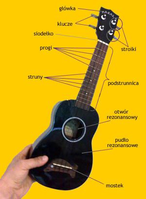 budowa ukulele